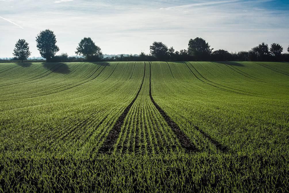 Economie zonder CO2-uitstoot